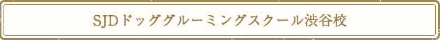 SJDドッググルーミングスクール渋谷校